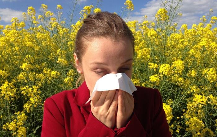 Heuschnupfen oder Erkältung - Symptome richtig erkennen